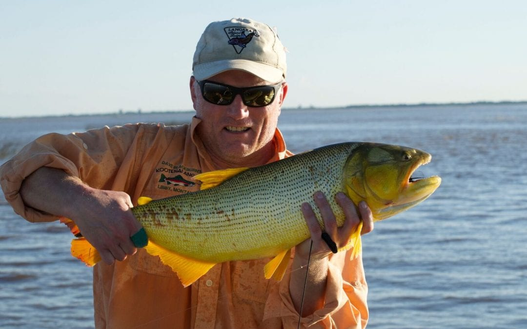 What's It Like to Fish for Golden Dorado in Argentina?